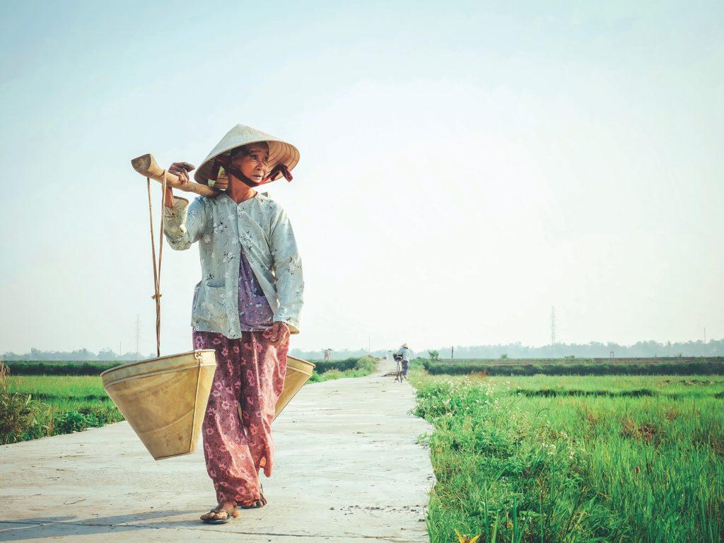swing abroad vietnam